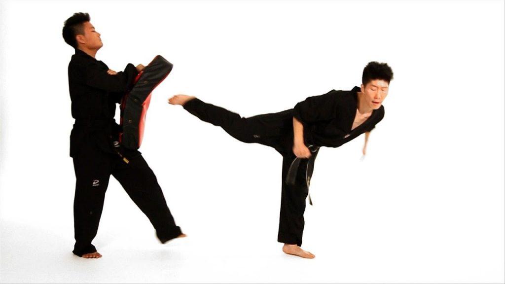 Strike Shield Blocking Pad Kicking//Body Shiled Martial Arts Karate Taekwondo