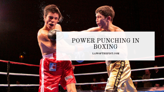 Power Punches In Boxing A Complete Guide Law Of The Fist